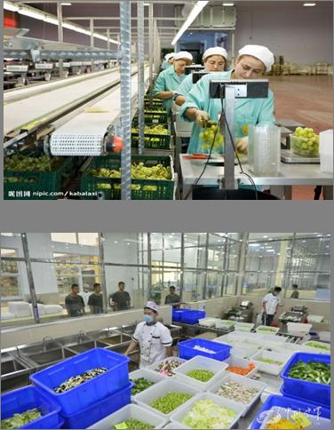 农产品加工区
